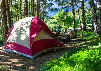 Camping en el Valle de Hecho Pirineos en una pradera de hierba natural: parcelas de diferentes tipos en el bosque entre pinos y hayas