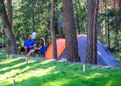 Camping en el Valle de Hecho Pirineos en una pradera de hierba natural: parcelas de diferentes tipos en el bosque entre pinos y hayas, en terrazas delimitadas