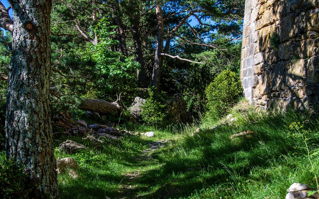 Un paseo por la Calzada Romana de Echo