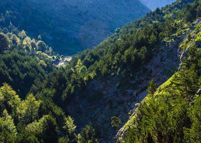 Camino a Bisaurín © Foto: Aitor Borruel