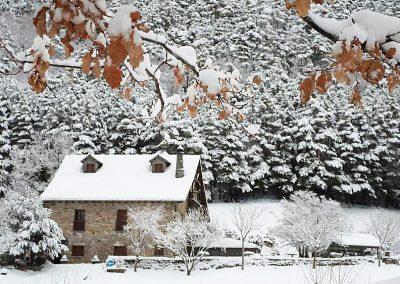 invierno en borda bisaltico