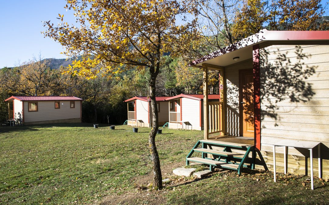 OFERTA POST COVID-19 BUNGALOWS