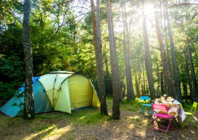 Parcelas en el bosque . Camping en Valle de Hecho