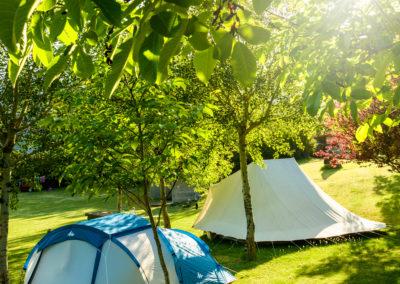 zona de parcelas . Camping en Valle de Hecho